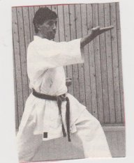 Karate31