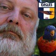 West Coast Eagle