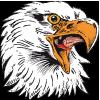 eagle30